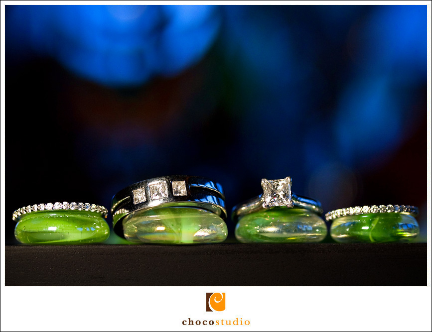 Wedding Rings Creative and Artistic Photo