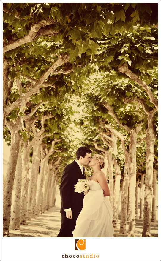 San Francisco City Hall Wedding Photo Outside in the Trees