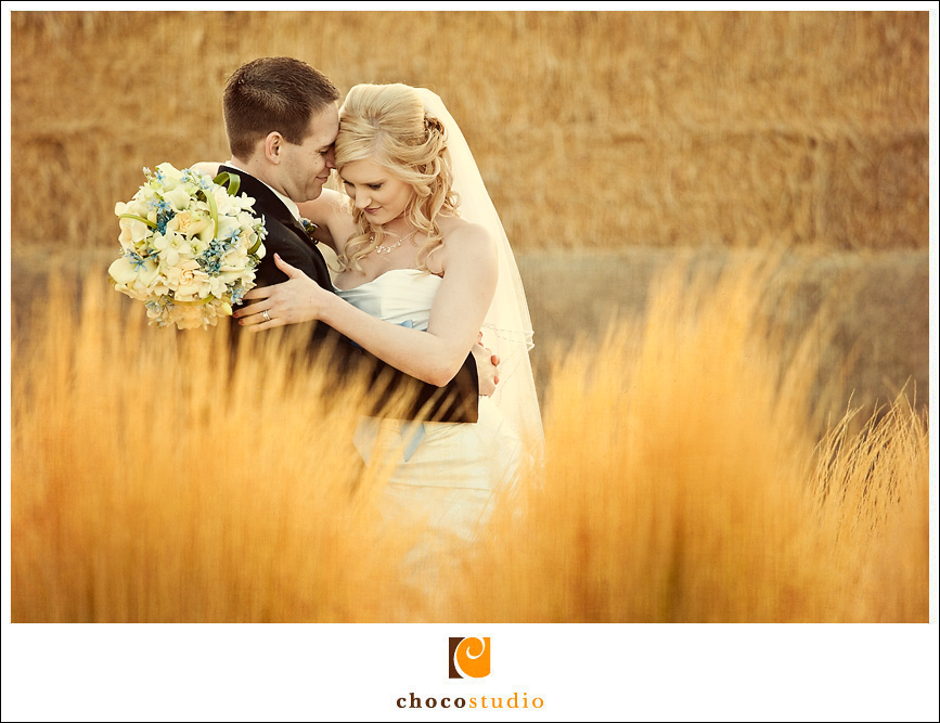 Wedding photo in Sonoma, California