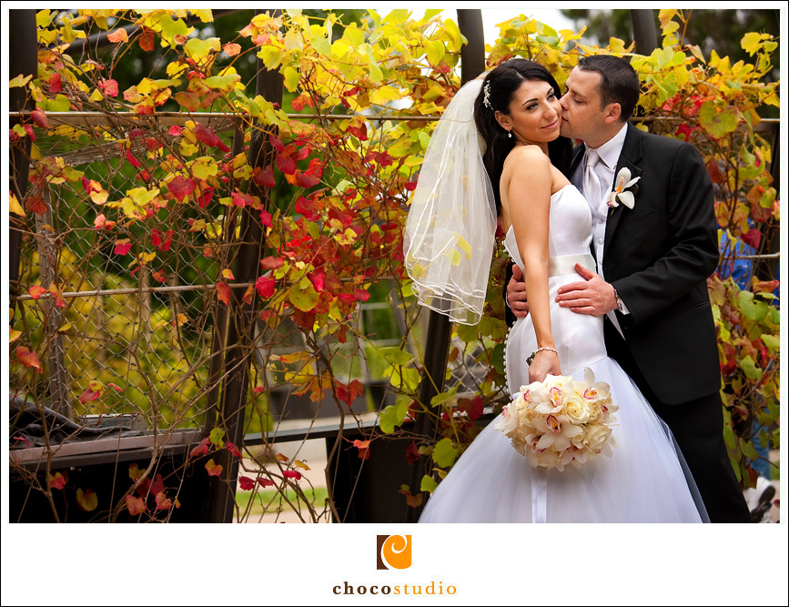 Bride and Groom with Grape Vines
