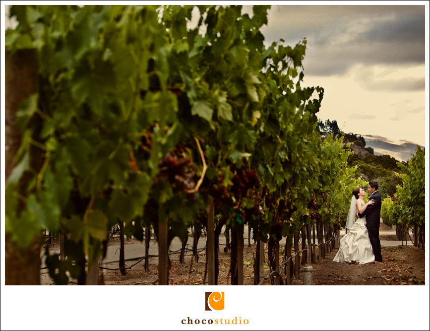 Photo of a bride and groom in the vineyards