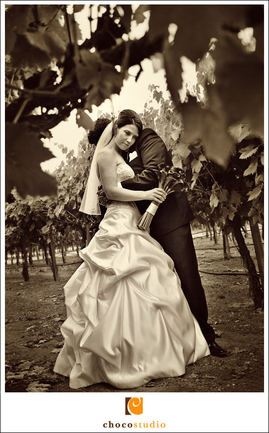Jen and Ignacio's vineyard photo