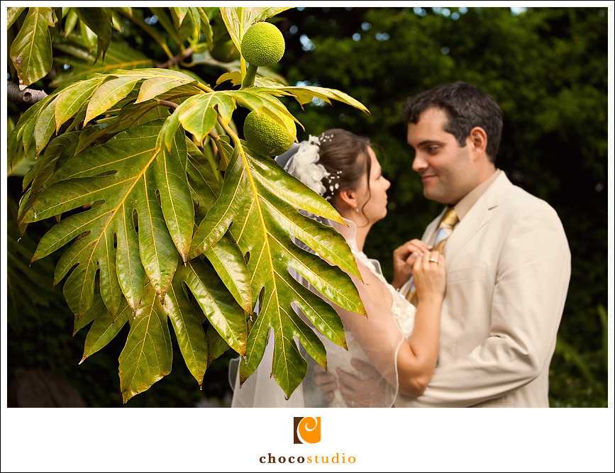 Tropical Bride and Groom Photo