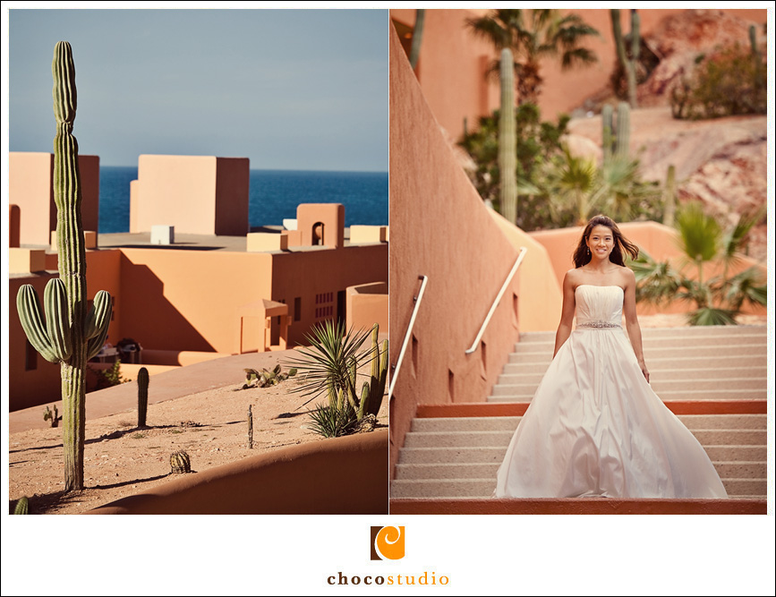 Los Cabos Wedding Photos