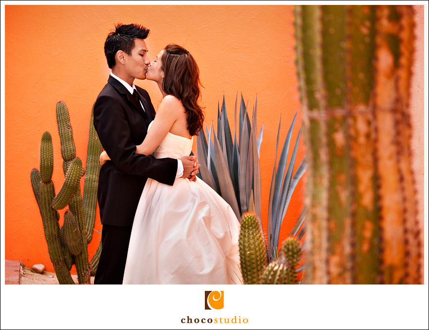 Bride and Groom with Agave and Cacti at the Westin in Los Cabos