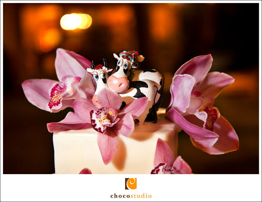 Creative wedding cake topper cow