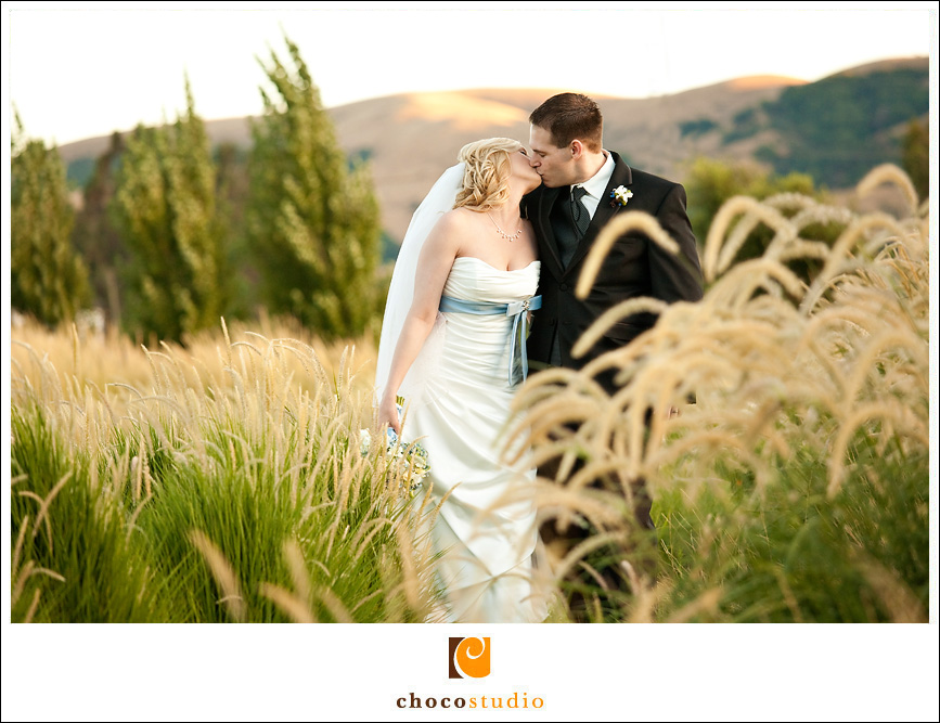 Cornerstone Vineyard Wedding Photos