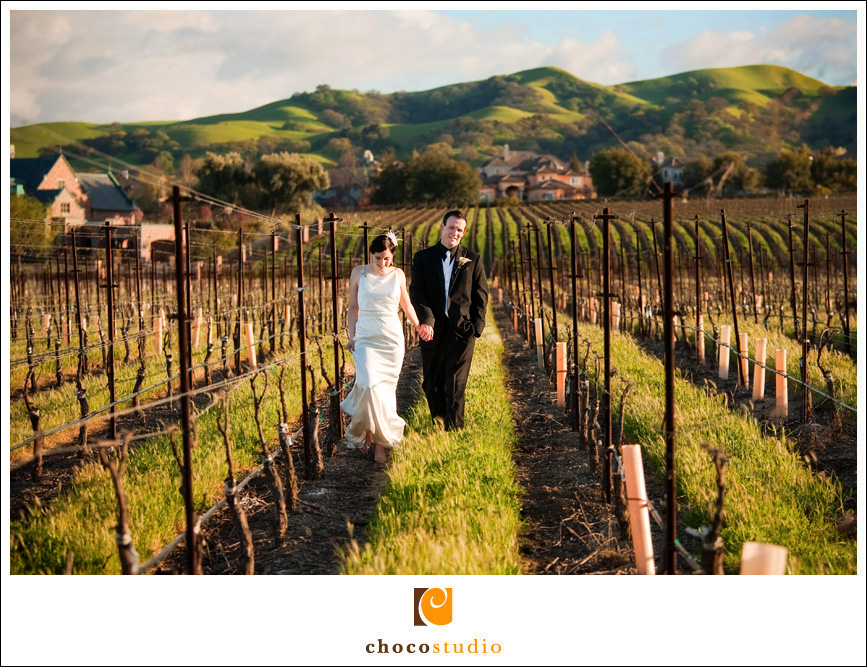 Casa Real Wedding Photo in the Vineyards