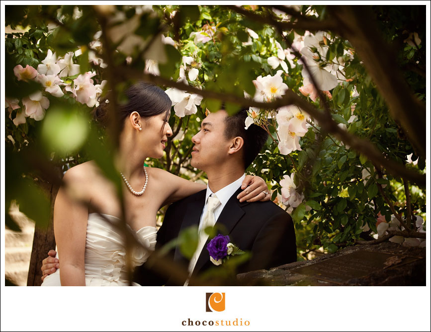 Wedding Photos at the Berkeley Rose Garden