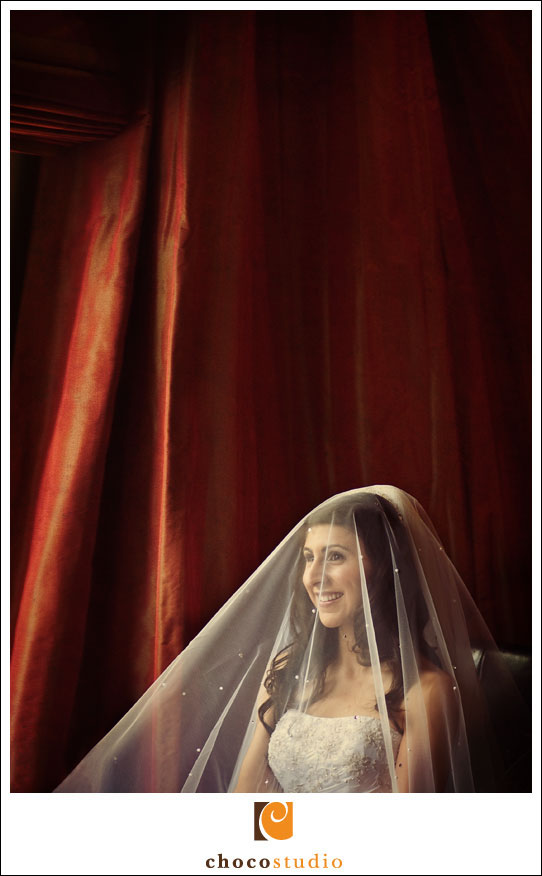 Bridal portrait in San Mateo Marriott