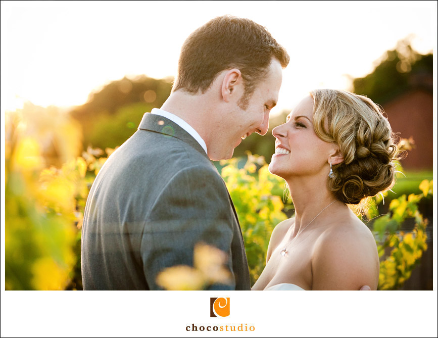 salvestrin-winery-wedding-20