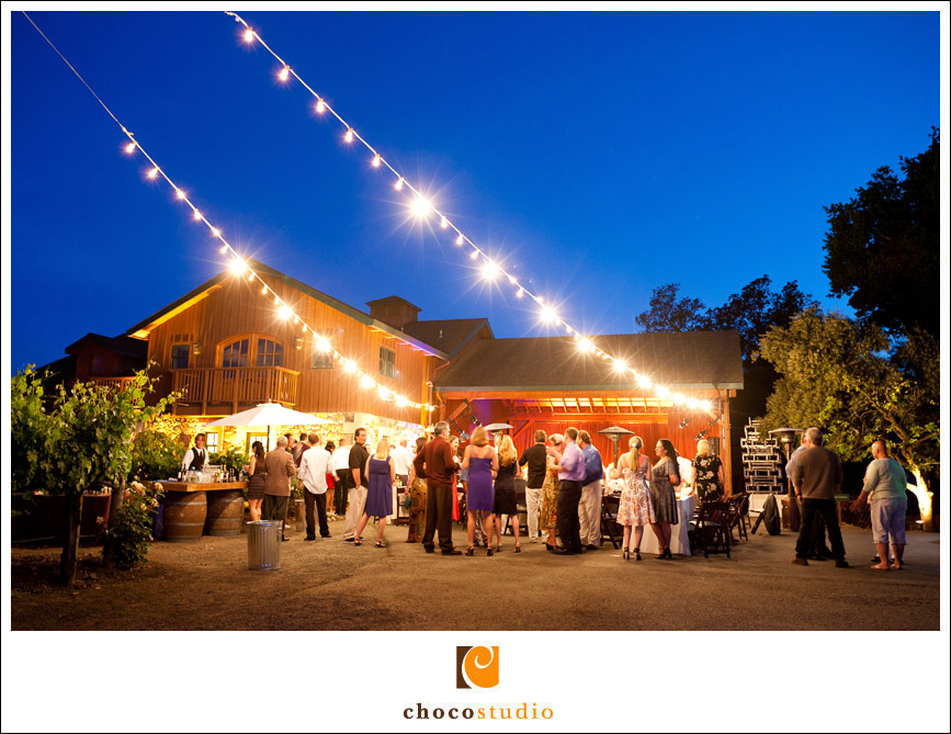 salvestrin-winery-wedding