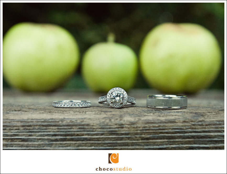 Wedding Rings at Dawn Ranch