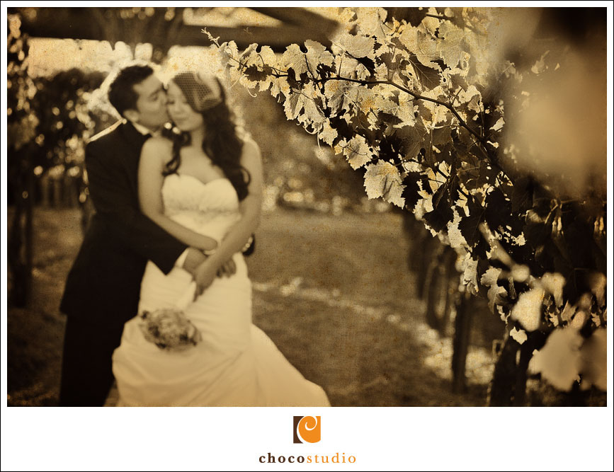 Wedding photograph of couple in the vineyard