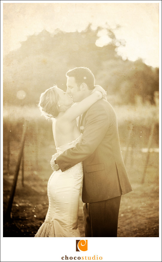 Wine country wedding photo