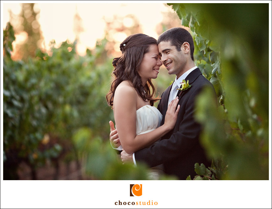 Couple laughting in the vineyard