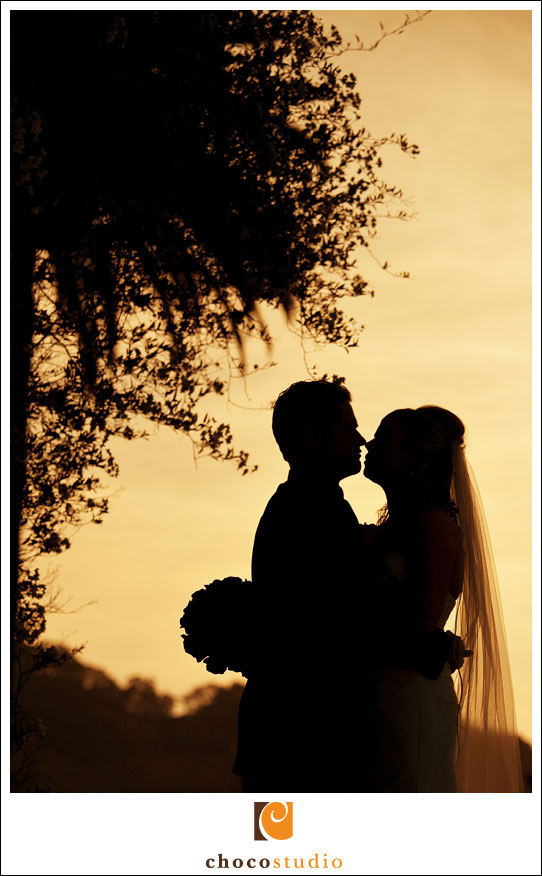 Napa wedding photograph silhouette