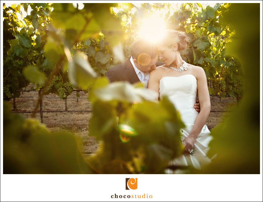 Wedding portrait in the vineyard