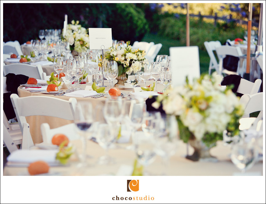 Sonoma wedding reception details