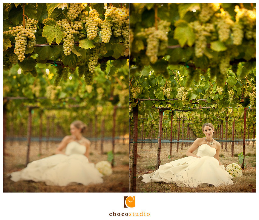 Portrait of a bride at Vine Hill House wedding