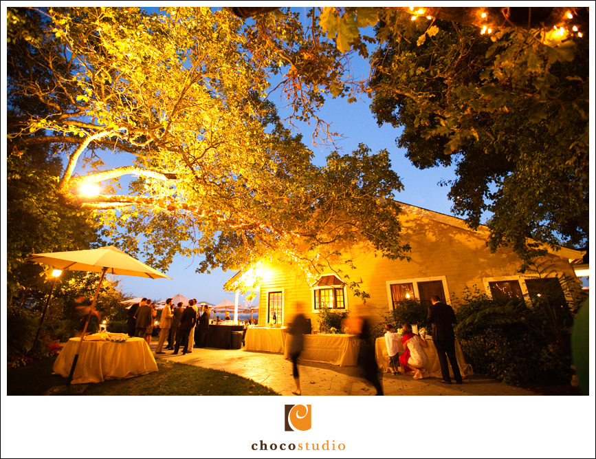 Vine Hill House wedding reception photograph