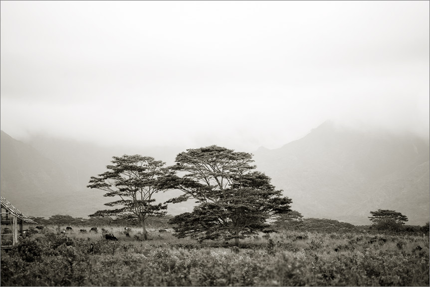 Kauai landscape photography