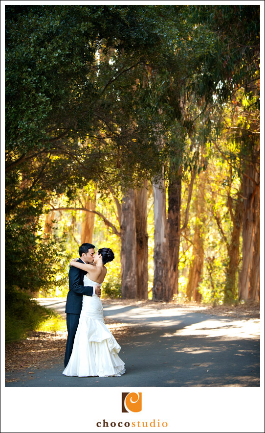 Bride and Groom portraits in Tildon Park