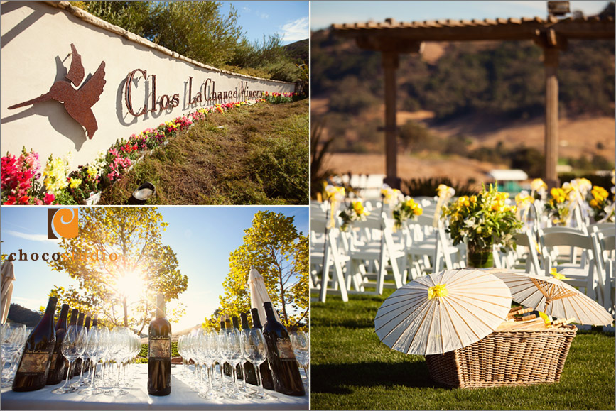 Landscaping details of Clos La Chance Winery
