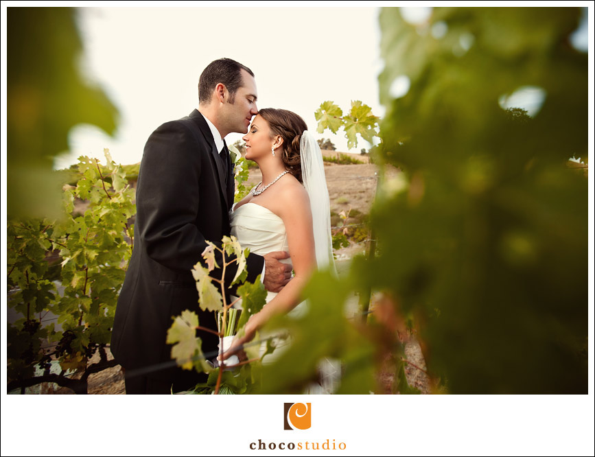 Bride and groom emotional portrait in vineyard