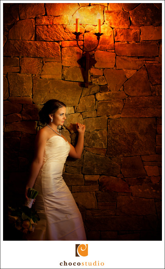 Portrait of a bride at Clos La Chance wedding