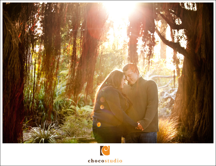 San Francisco Arboretum Engagement