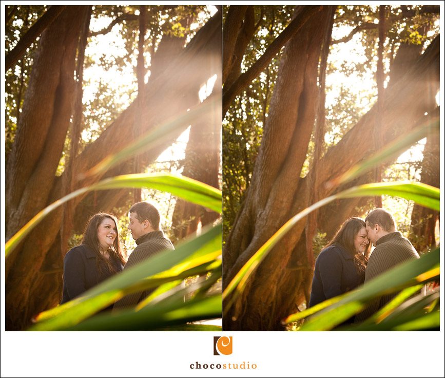 Golden Gate Park Botanical Garden engagement