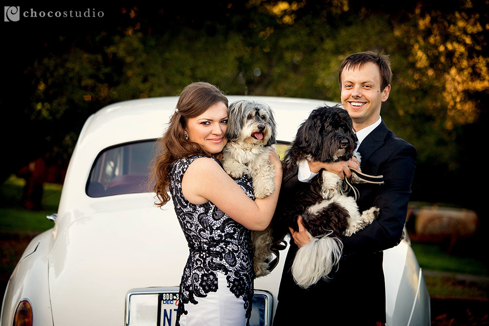 Vintage engagement session with dogs