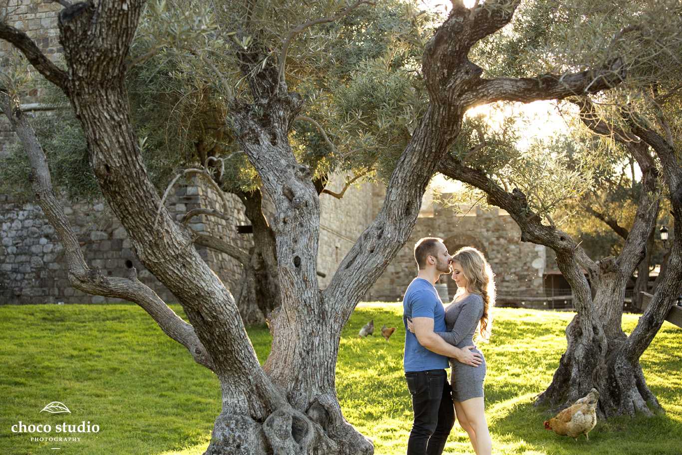 Castello di Amorosa Calistoga Engagement Photos