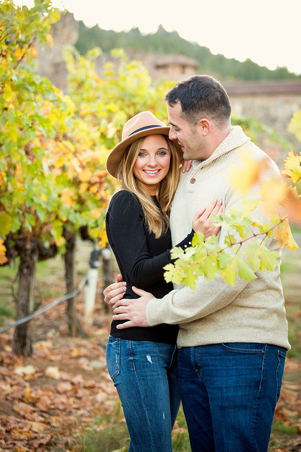 Vineyard Proposal in Calistoga