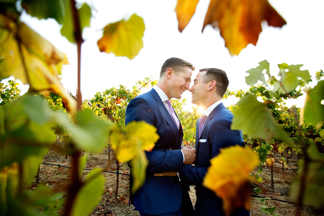 Arista Winery Wedding Vineyard