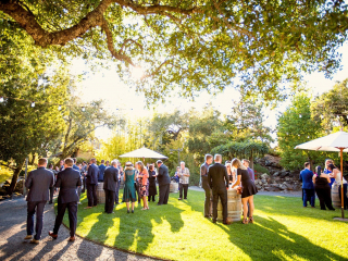 Wedding Guests During Cocktail Hour in Healdsburg